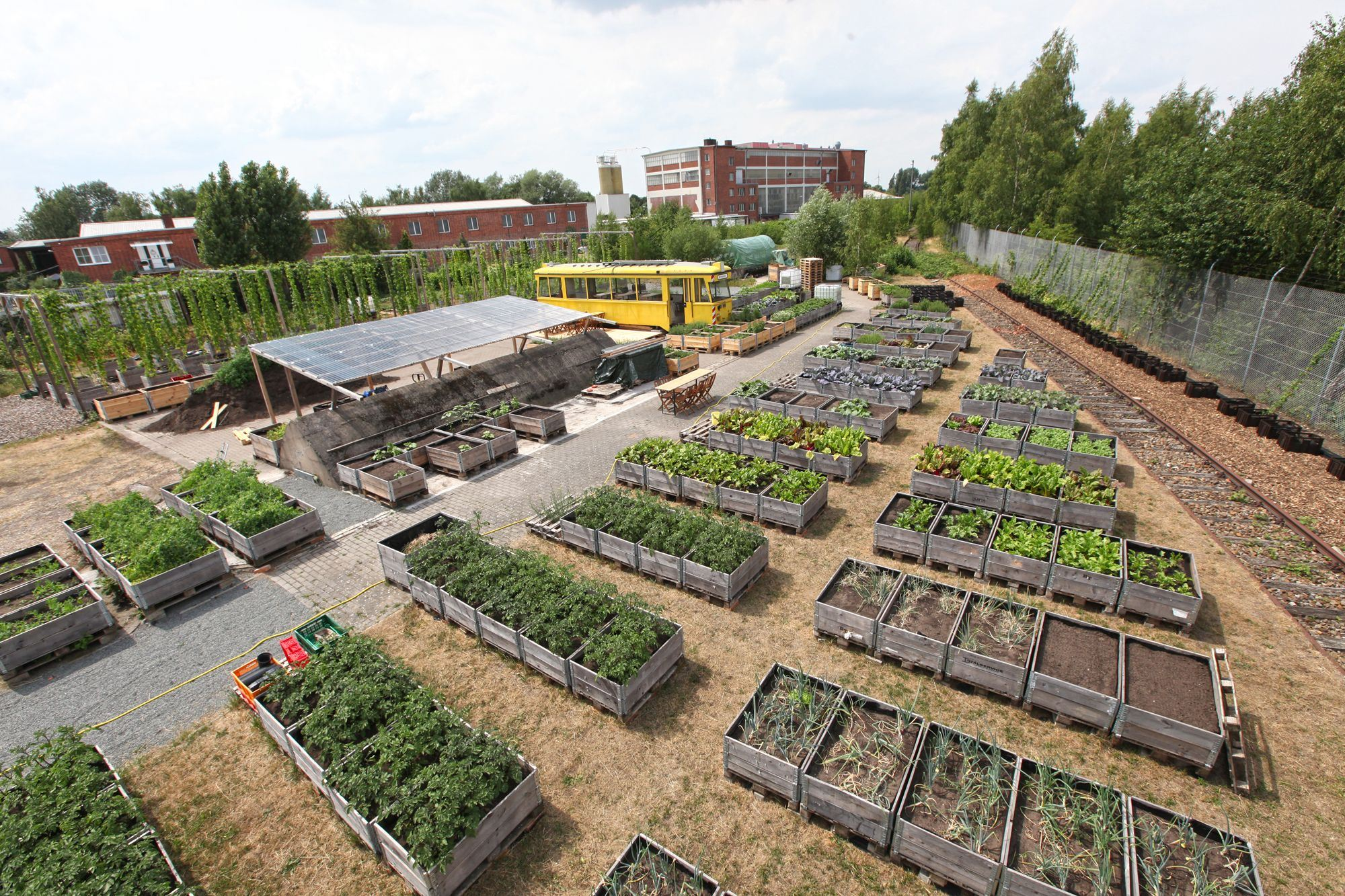 Die Bremer Gemüsewerft - Edukative und städtebauliche Mehrwerte urbaner Landwirtschaft am Beispiel der Bremer Gemüsewerft